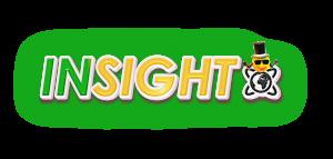 insight-final